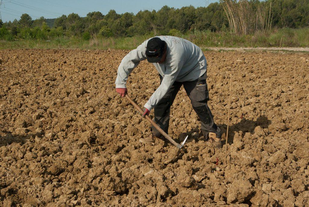 consulenza apertura azienda agricola