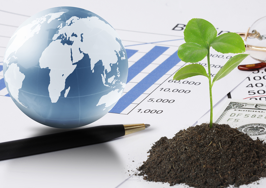 marketing agroalimentare