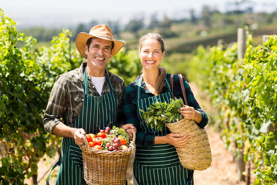 come aprire un'azienda agricola biologica