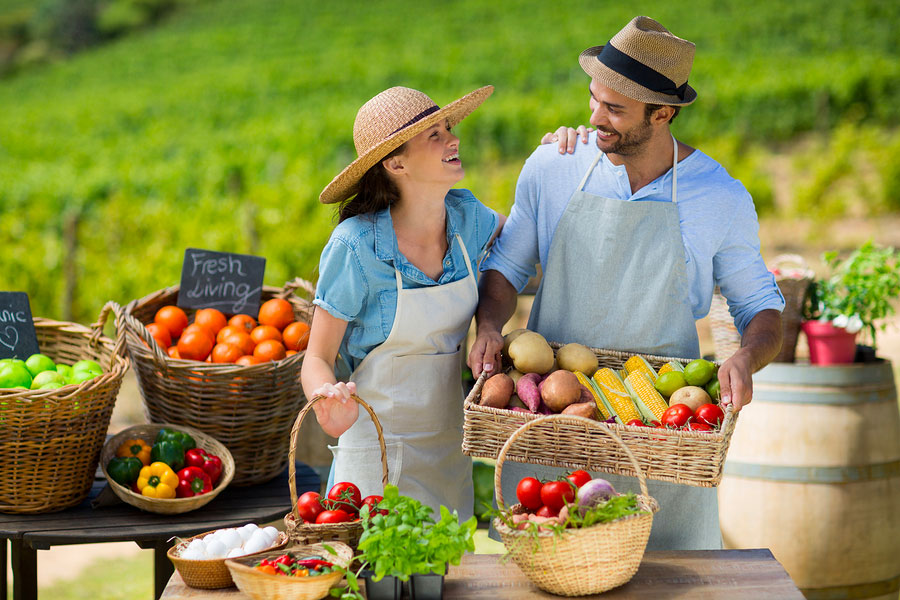 incentivi giovani agricoltori 2019