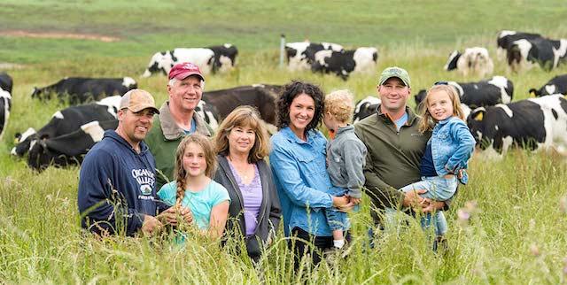 progetto di azienda agricola