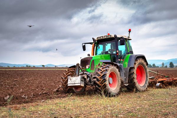 come diventare imprenditore agricolo partendo da zero